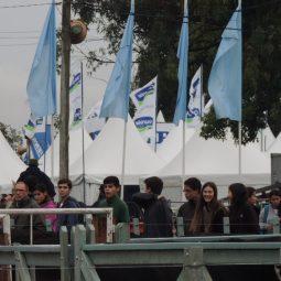 Fotos dia 1 - Expo Melilla 2016 (100)
