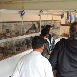 Fotos dia 1 - Expo Melilla 2016 (158)