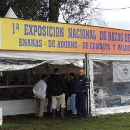 Fotos dia 1 - Expo Melilla 2016 (159)