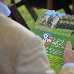 Fotos dia 1 - Expo Melilla 2016 (60)