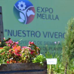 Fotos dia 2 - Expo Melilla 2016 (25)