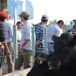 Fotos dia 2 - Expo Melilla 2016 (67)