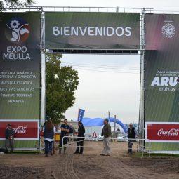 Fotos dia 3 - Expo Melilla 2016 (17)