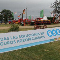 Expo Melilla 2017 - Día 1 (138)