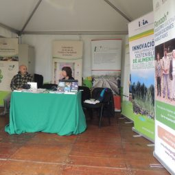 Expo Melilla 2017 - Día 2 (98)