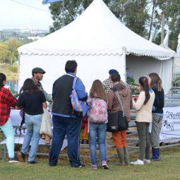 Expo Melilla 2017 - Dia 3 (11)