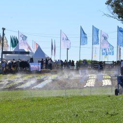 Expo Melilla 2017 - Dia 3 (52)