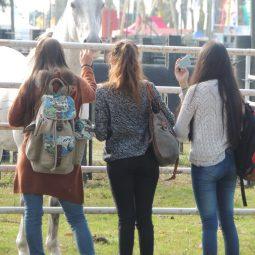 Expo Melilla 2017 - Dia 3 (60)