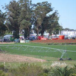 Expo Melilla 2017 - Dia 4 (52)