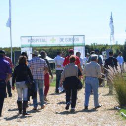 Expo Melilla 2017 - Dia 5 (39)