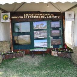 Día 1 - Expo Melilla 2018 (100)