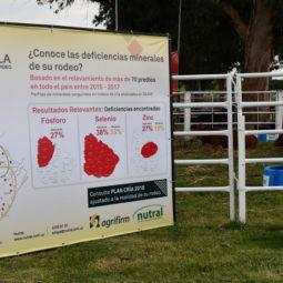 Día 1 - Expo Melilla 2018 (11)