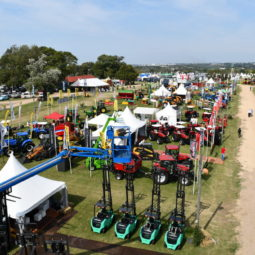 Día 1 - Expo Melilla 2018 (53)