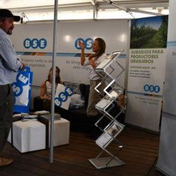 Día 1 - Expo Melilla 2018 (71)