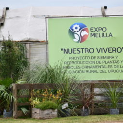 Día 2 - Expo Melilla 2018_143