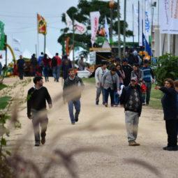 Día 3 - Expo Melilla 2018_028