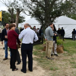 Día 3 - Expo Melilla 2018_096