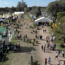 Día 5 - Expo Melilla 2018_06