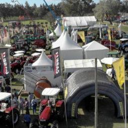 Día 5 - Expo Melilla 2018_09
