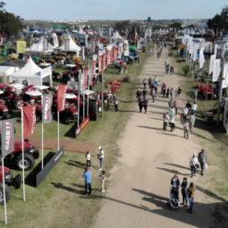 Día 5 - Expo Melilla 2018_12