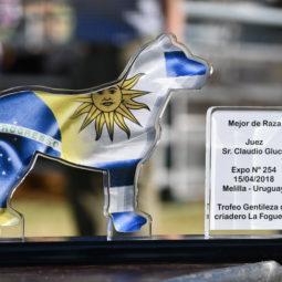 Día 5 - Expo Melilla 2018_23