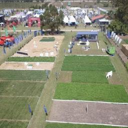 Expo Melilla 2019 - Día 1 (10)