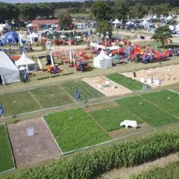 Expo Melilla 2019 - Día 1 (11)