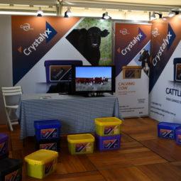 Expo Melilla 2019 - Día 2 (90)