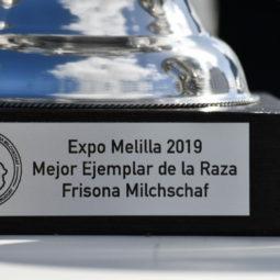 Expo Melilla 2019 - Día 3 (101)