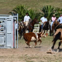 Expo Melilla 2019 - Día 4 (179)