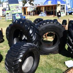 Expo Melilla 2019 - Día 4 (35)