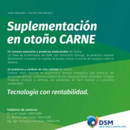DSM (5)