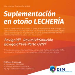 DSM (6)